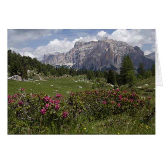 Tarjeta Wildflowers y las montañas de la dolomía, Italia