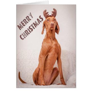 """Tarjeta Xmas Card/Christmas Card """"Magyar Vizsla """""""