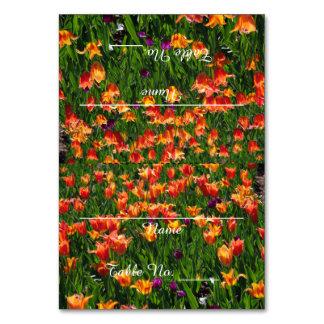 Tarjetas anaranjadas de la tabla del jardín