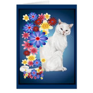 Tarjetas blancas del gatito del jardín