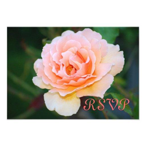 Tarjetas color de rosa perfectas de RSVP de la ima Invitacion Personalizada