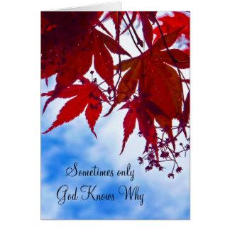 Tarjetas de condolencia fúnebres de las invitacion