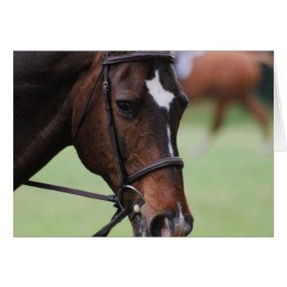 Tarjetas de felicitación árabes lindas del caballo