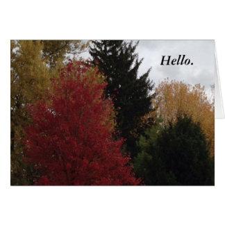 Tarjetas de felicitación coloridas de los árboles