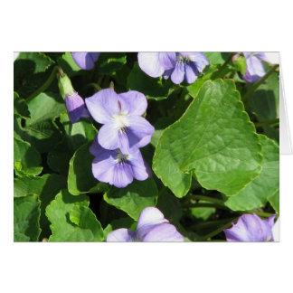 Tarjetas de felicitación de las violetas
