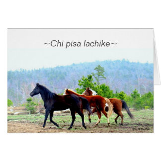 Tarjetas de felicitación del Choctaw (lachike de
