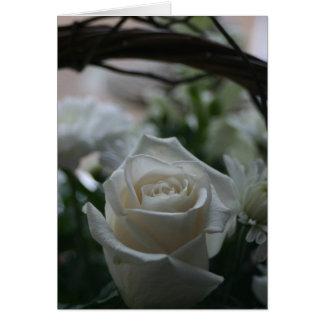 Tarjetas de felicitación únicas del rosa blanco de
