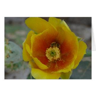 tarjetas de la flor