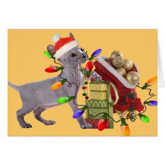 Tarjetas de las Felices Navidad de Sphynx