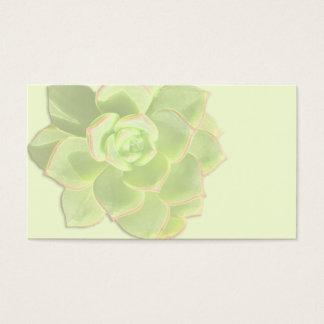 Tarjetas de marfil suculentas verdes del lugar
