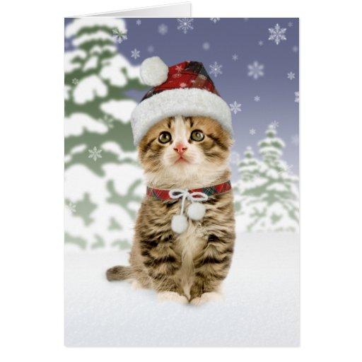Tarjetas de Navidad del gatito Nevado