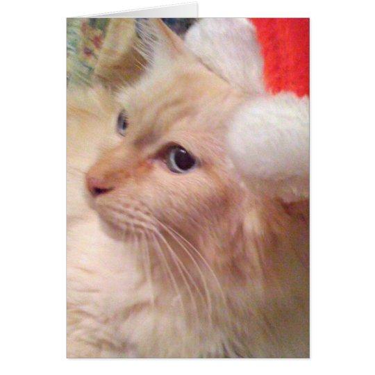 Tarjetas de Navidad del gato SM de Cokie