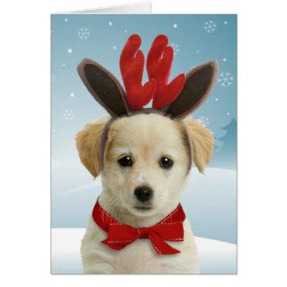 Tarjetas de Navidad del perrito del reno