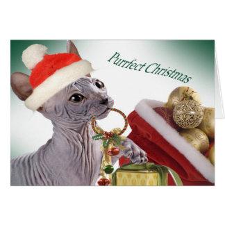 Tarjetas de Navidad sin pelo de Sphynx
