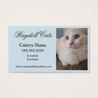 Tarjetas de visita del gato