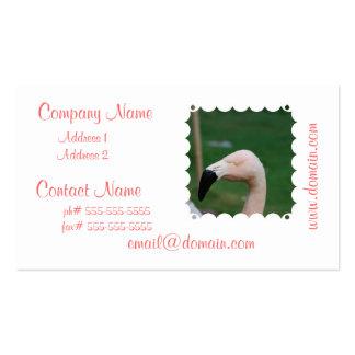 Tarjetas de visita del pájaro del flamenco
