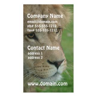 Tarjetas de visita jovenes del león