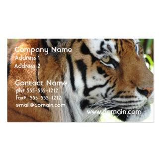 Tarjetas de visita jovenes del tigre