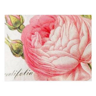 Tarjetas del día de San Valentín románticas retras Tarjetas Postales