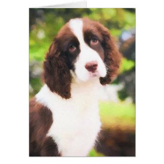 Tarjetas del perro de aguas de saltador inglés