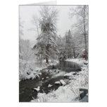 Tarjetas del solsticio de invierno