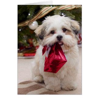 Tarjetas dulces del perrito del navidad