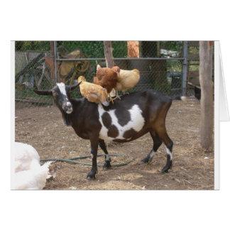 Taxi de la cabra tarjeta de felicitación