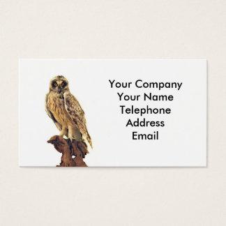 Taxidermy de un búho tarjeta de negocios