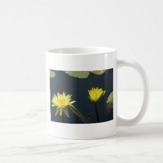 Taza amarilla de Waterlily