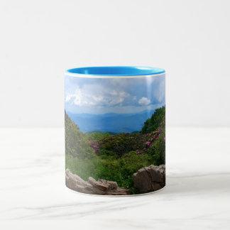 Taza azul de la primavera de Ridge