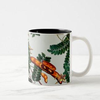 Taza Bicolor Debajo del árbol de tamarindo