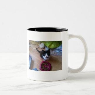 Taza Bicolor Gato del gatito