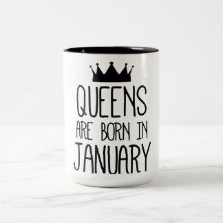 Taza Bicolor Queens are born in January