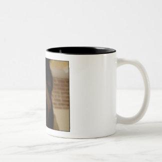Taza Bicolor Sr. Bear Mug