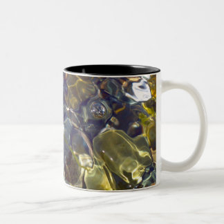 Taza Bicolor Vitral colorido abstracto elegante
