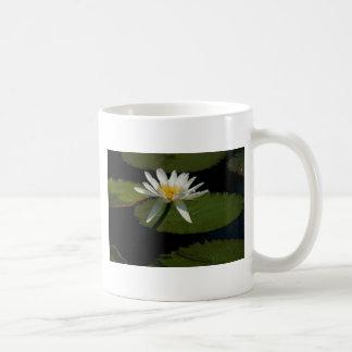Taza blanca de Waterlily