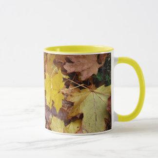Taza caida de las hojas de arce