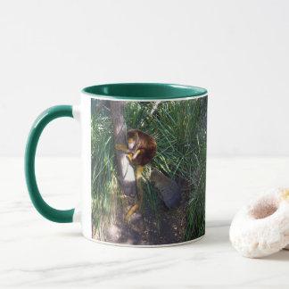 Taza Canguro de árbol australiano,