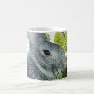 Taza con el conejo - chinchilla rara del americano