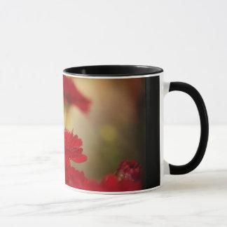 Taza Crisantemos rojos
