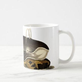 Taza De Café Ahorre las ballenas