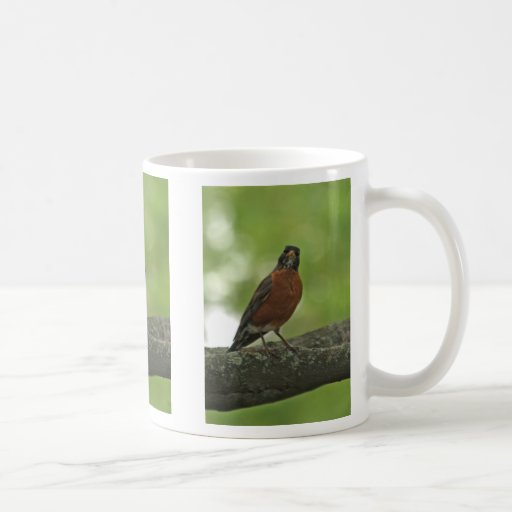 Taza de café americana del petirrojo