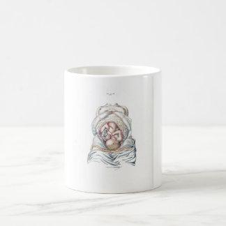 Taza De Café Anatomía del vintage de un niño humano en matriz