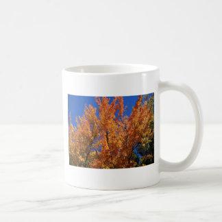 Taza De Café Árbol anaranjado del fuego