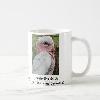 Taza De Café Australiano Galah (Cockatoo color de rosa de
