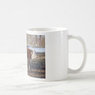 Taza De Café Becerros de Hereford en prado del invierno con