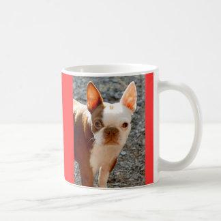 Taza De Café Boston Terrier w/Name