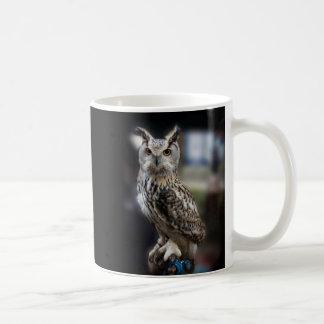 Taza De Café Búho de Eagle de la cita de Sócrates
