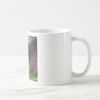 Taza De Café Castor norteamericano que come la verdura
