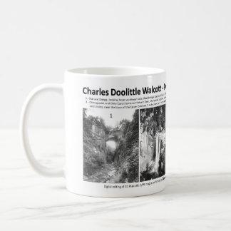 Taza De Café Charles Doolittle Walcott I - promoción del